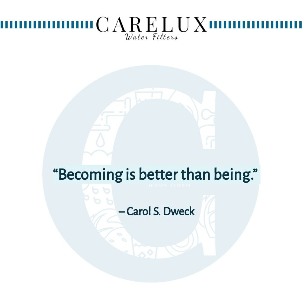 Carol_S_Dweck_Quote