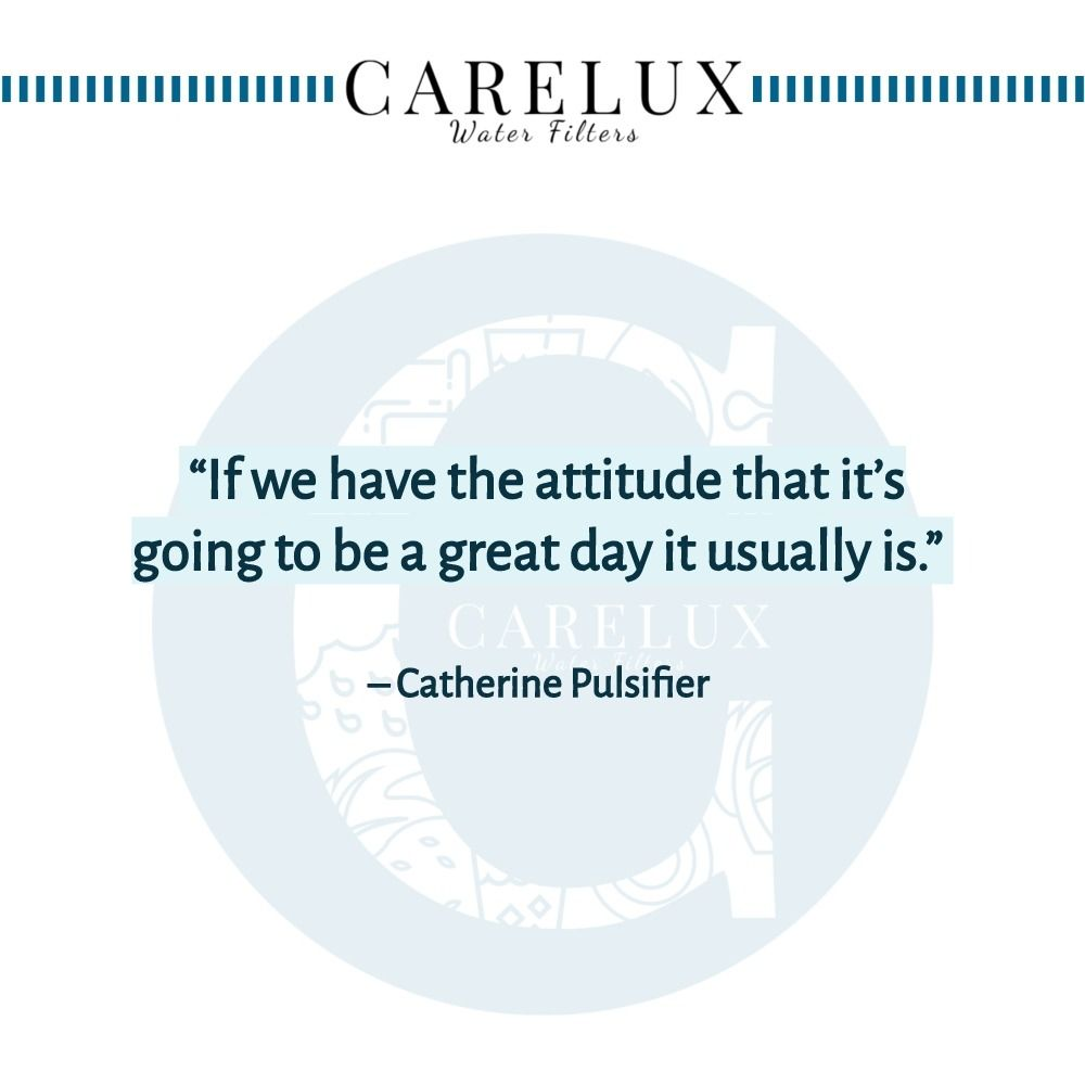 Catherine_Pulsifier_Quote