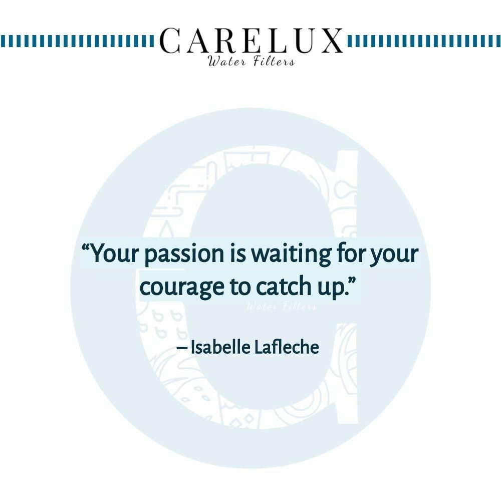 Isabelle_Laflece_quote