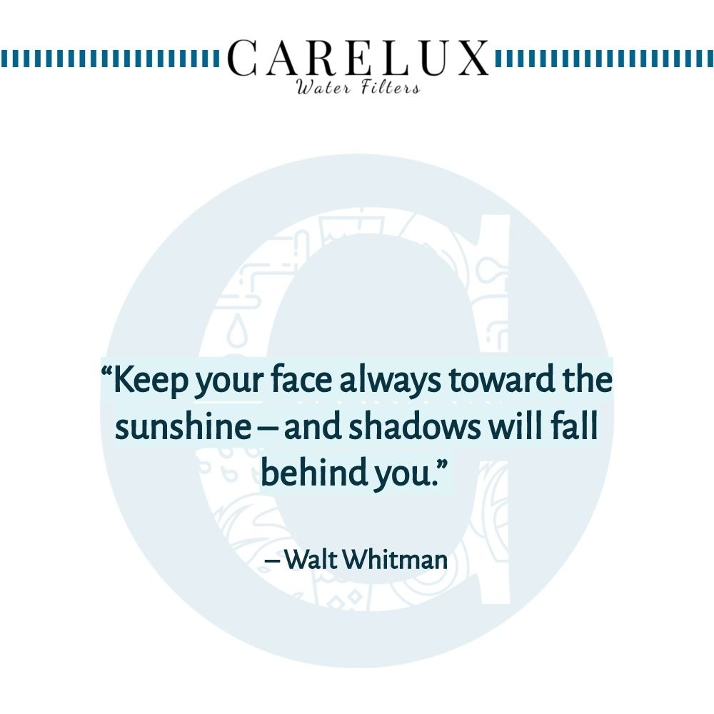Walt_Whitman_Quote